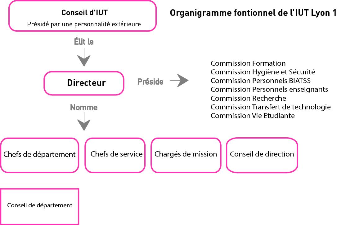 IUT - Structure et fonctionnement